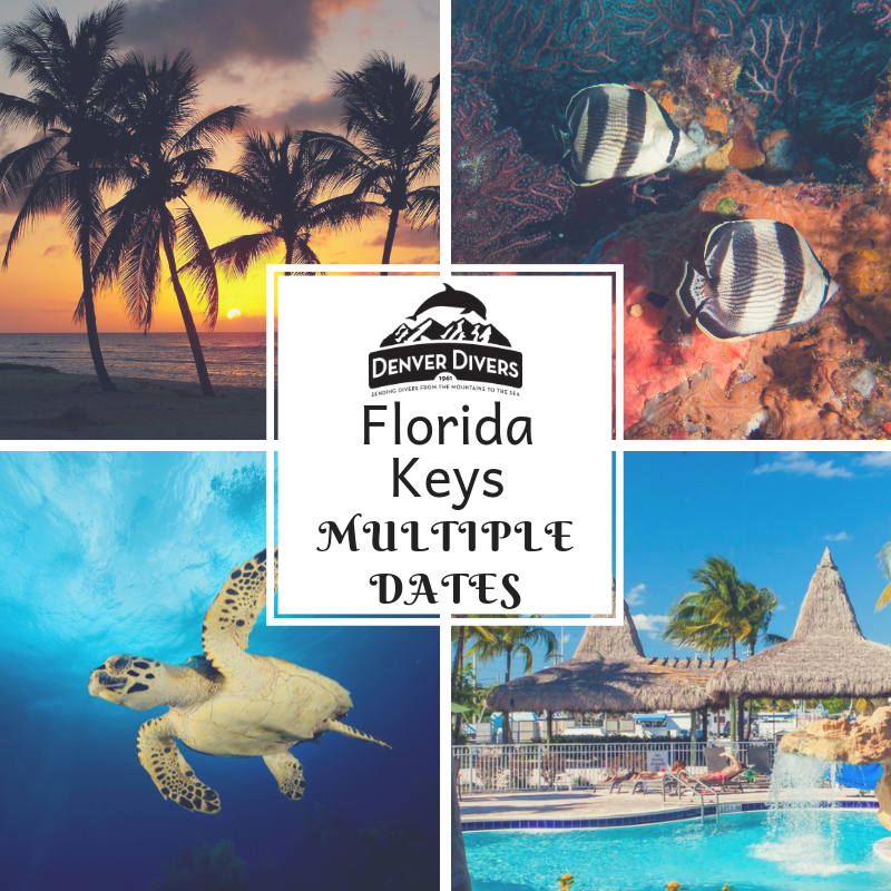 Florida Keys 2019