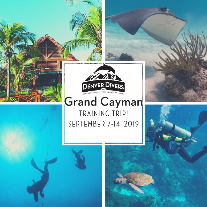 Grand Cayman Training 2019