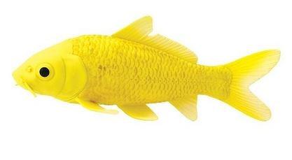 SAFARI Koi Fish
