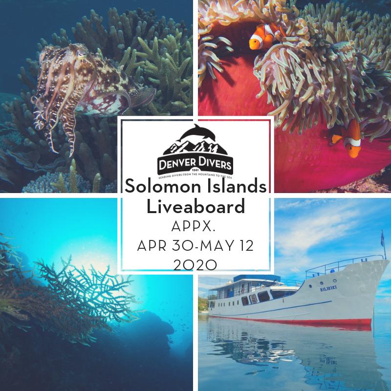 Solomon Islands Liveaboard 2020