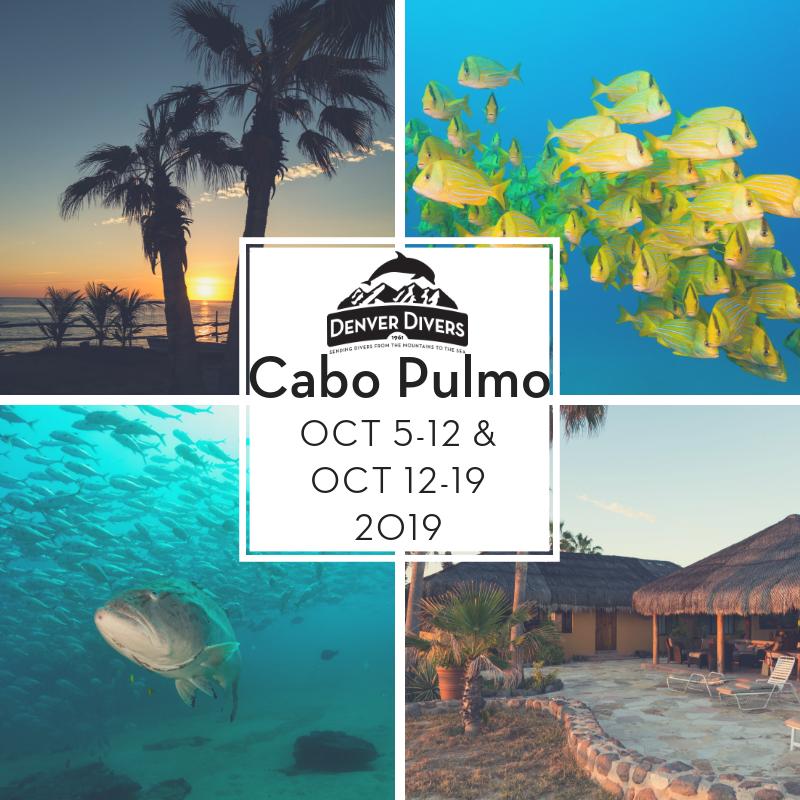 Cabo Pulmo 2019