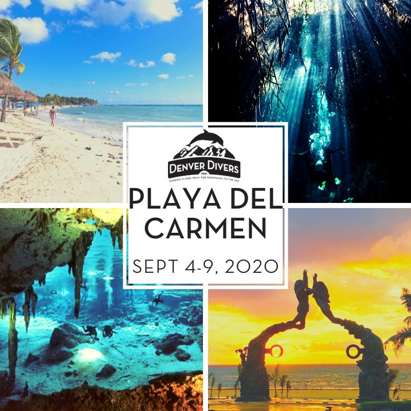 Playa del Carmen Cenotes Tour 2020