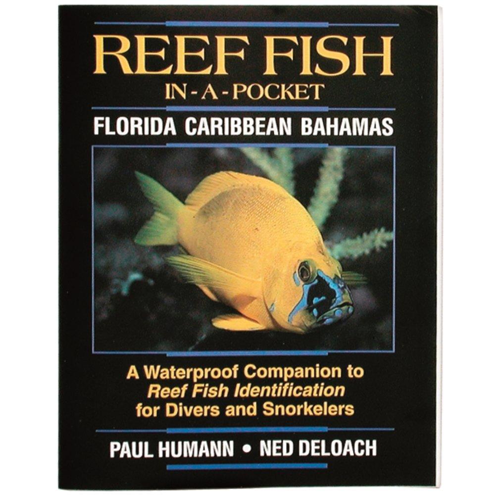 INNOVATIVE  Pocket Reef ID Books
