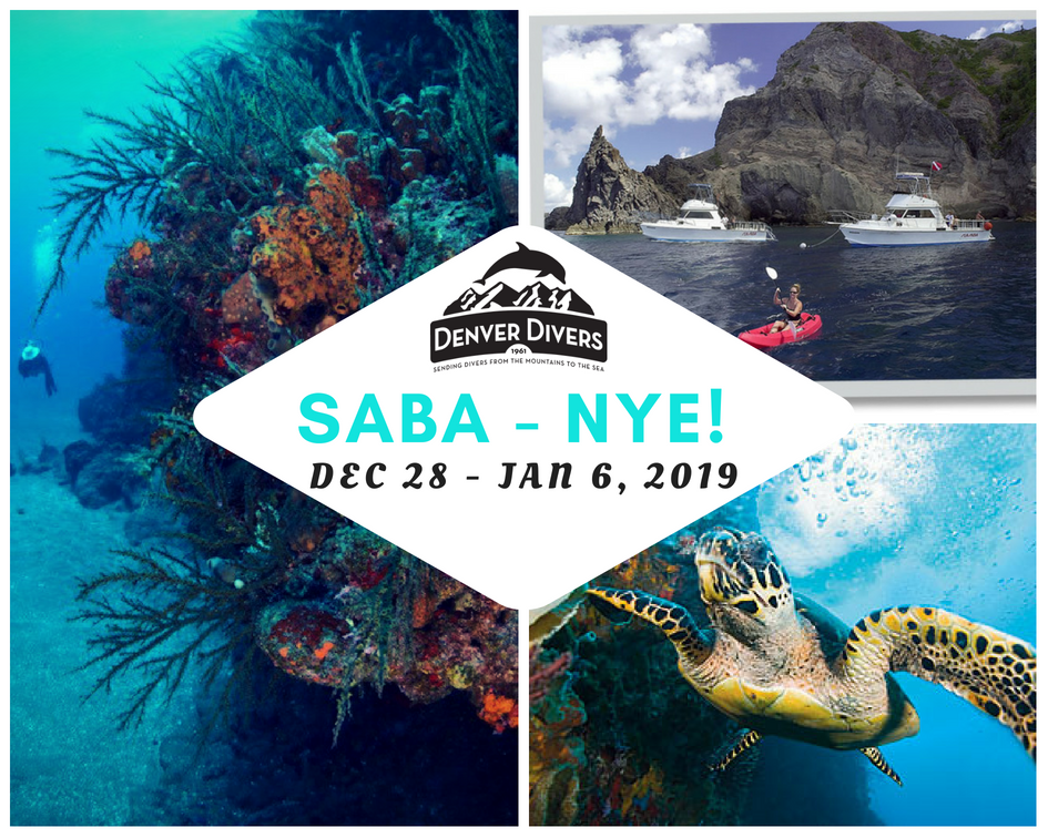 Saba 2018-19