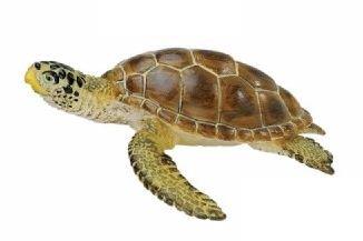 SAFARI Wild Safari Sea Life  Loggerhead Turtle