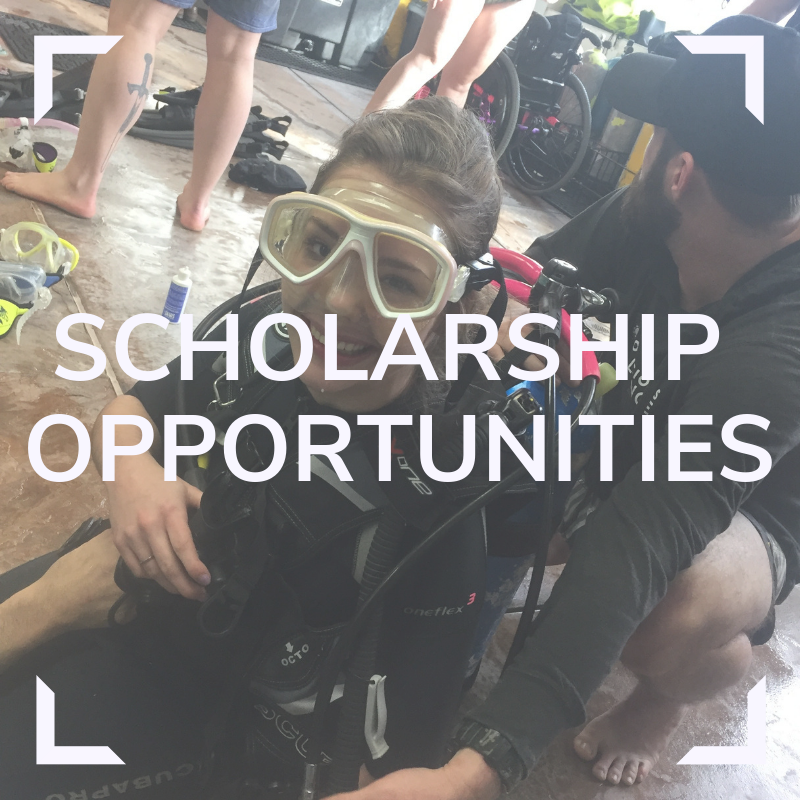 DAD Scholarship Opportunities Link