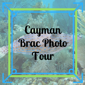 Cayman Brac Photo Tour