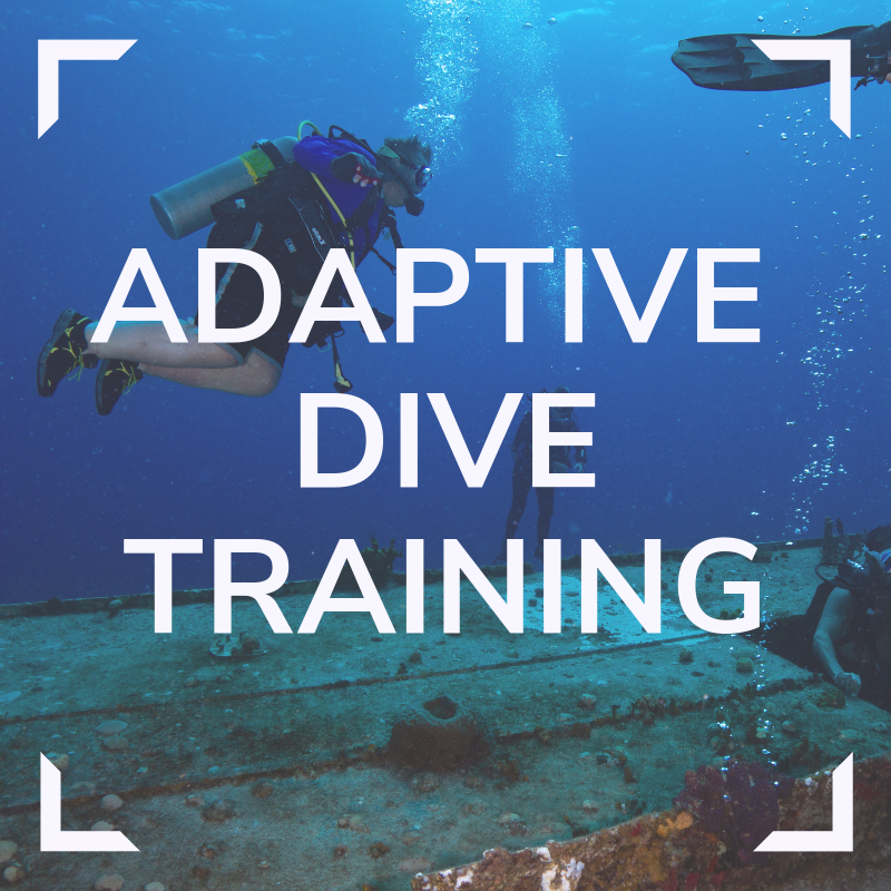 Adaptive Dive Training Link Link