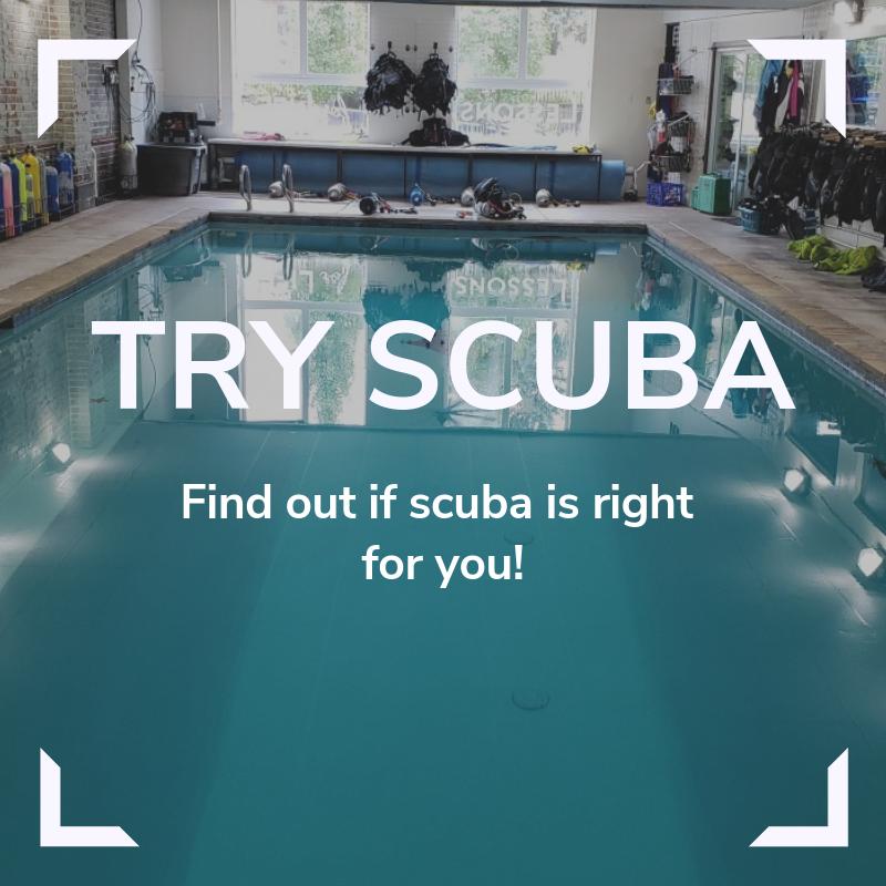 Try Scuba Link
