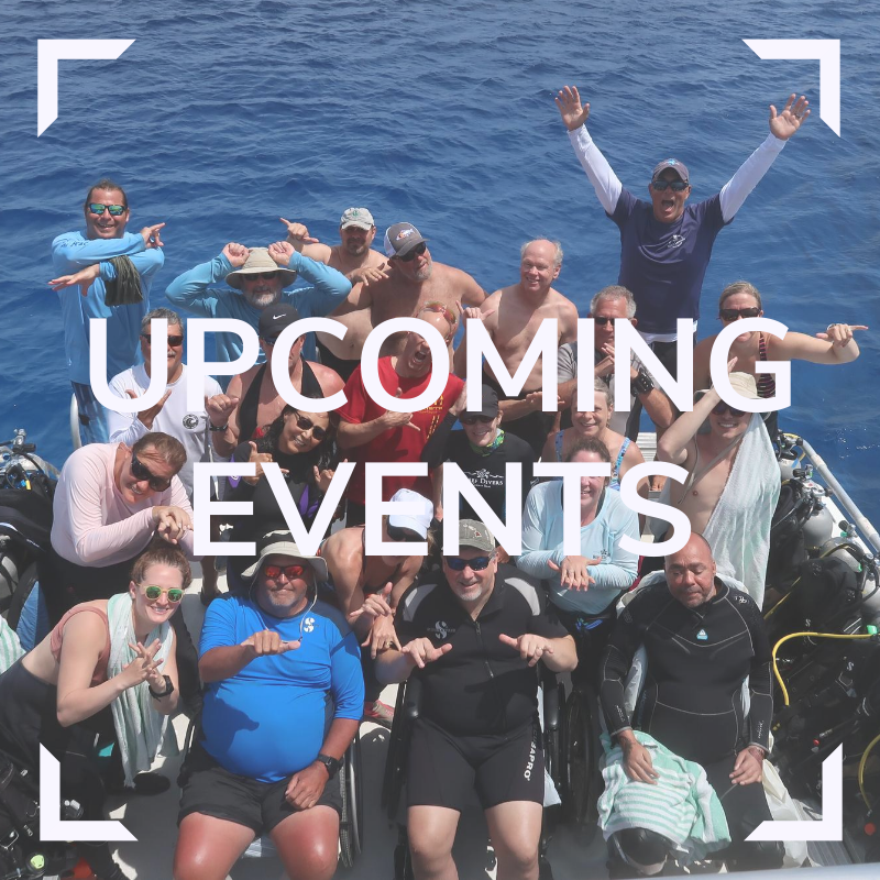 DAD Upcoming Events Link