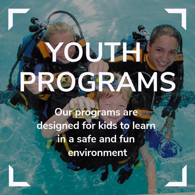 Youth Programs Link