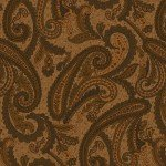 Katie's cupboard, brown paisley