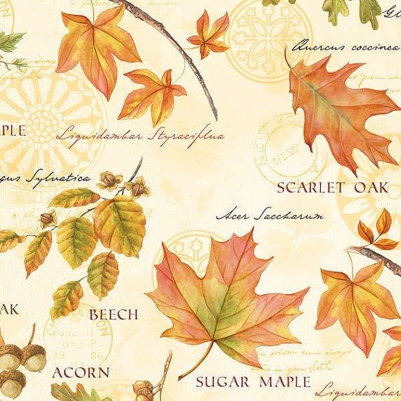 Fall festival, multi leaves