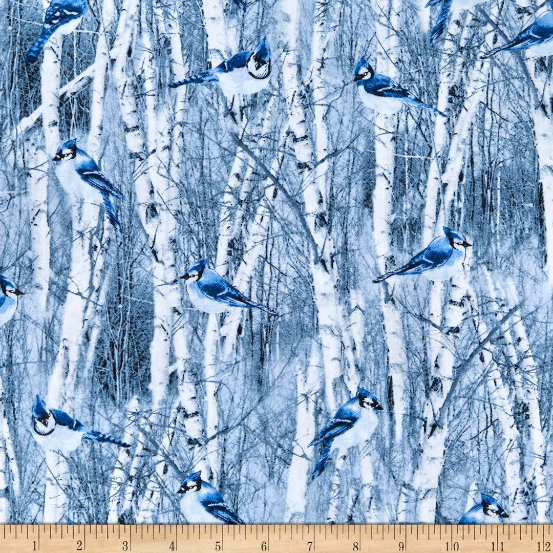 Winter Frost Winter Blue Bird Blue