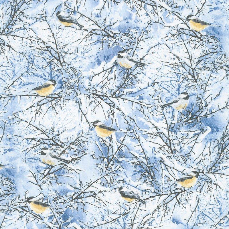Winter Frost Winter Birds Blue