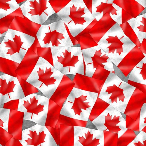 Canadianisms Flag Print