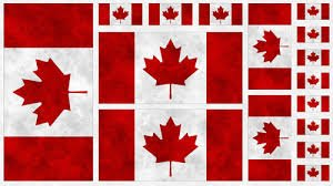 Canadianisms Multi Sized Flags