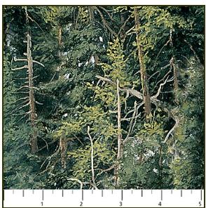 Naturescapes 21408-76
