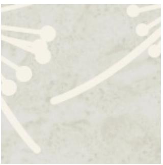 Hope Cement, RU070-0138