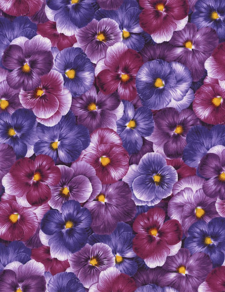 Viola Packed Pansies