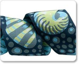 Shells - Blue