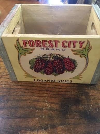 Berry Box Logan Berries