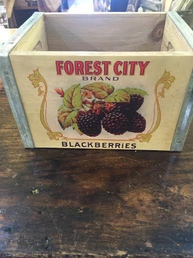 Berry Box Blackberries