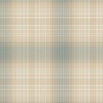 Blue Ombre Plaid Yarn Dye