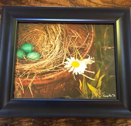 Birds Nest Picture in Frame