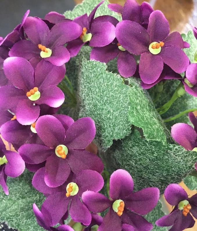 1.25 African Violet DK purple