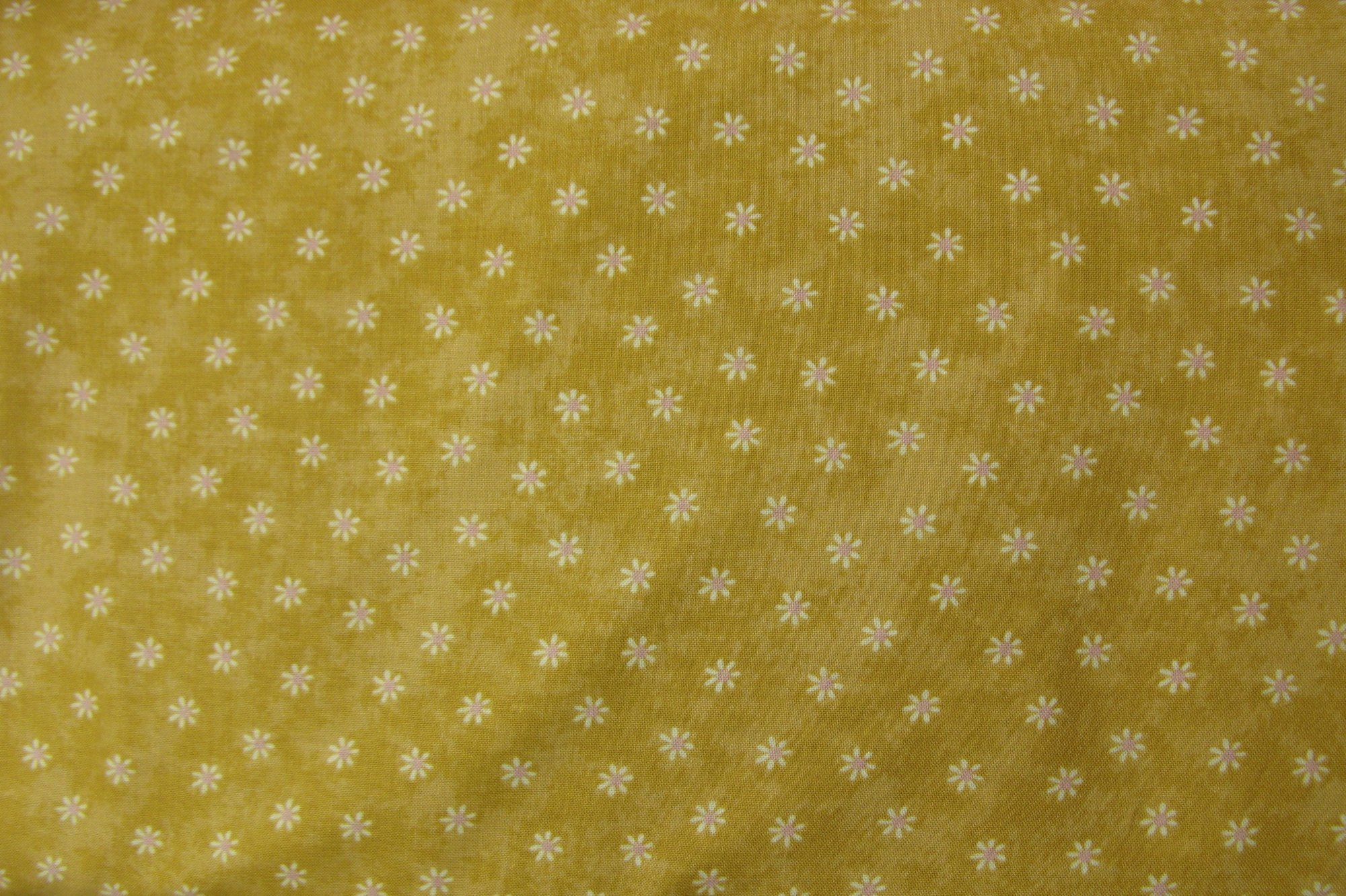 Daisy Dot-gold