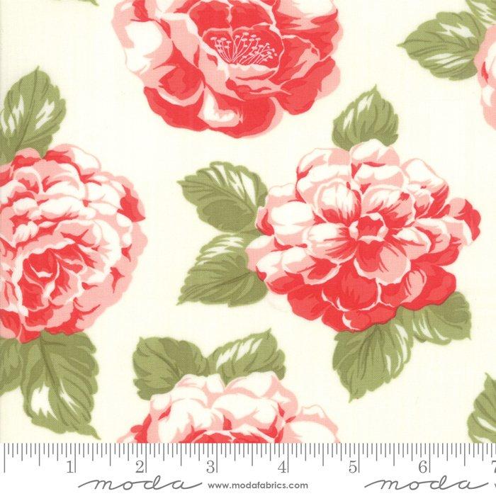 Early Bird - Blooms 108 - Cream