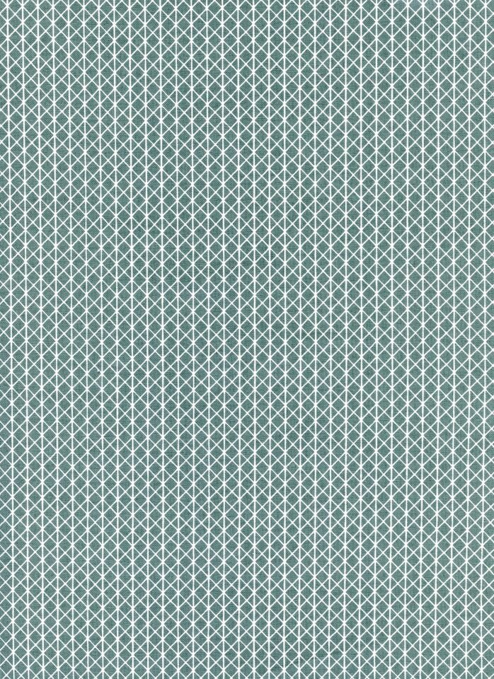 Cotton + Steel Basics -Netorious -Camp Out