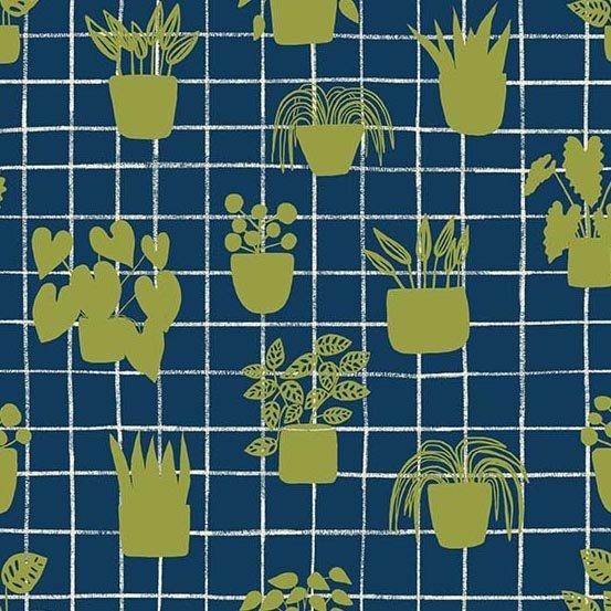 Home - House Plants - Cobalt