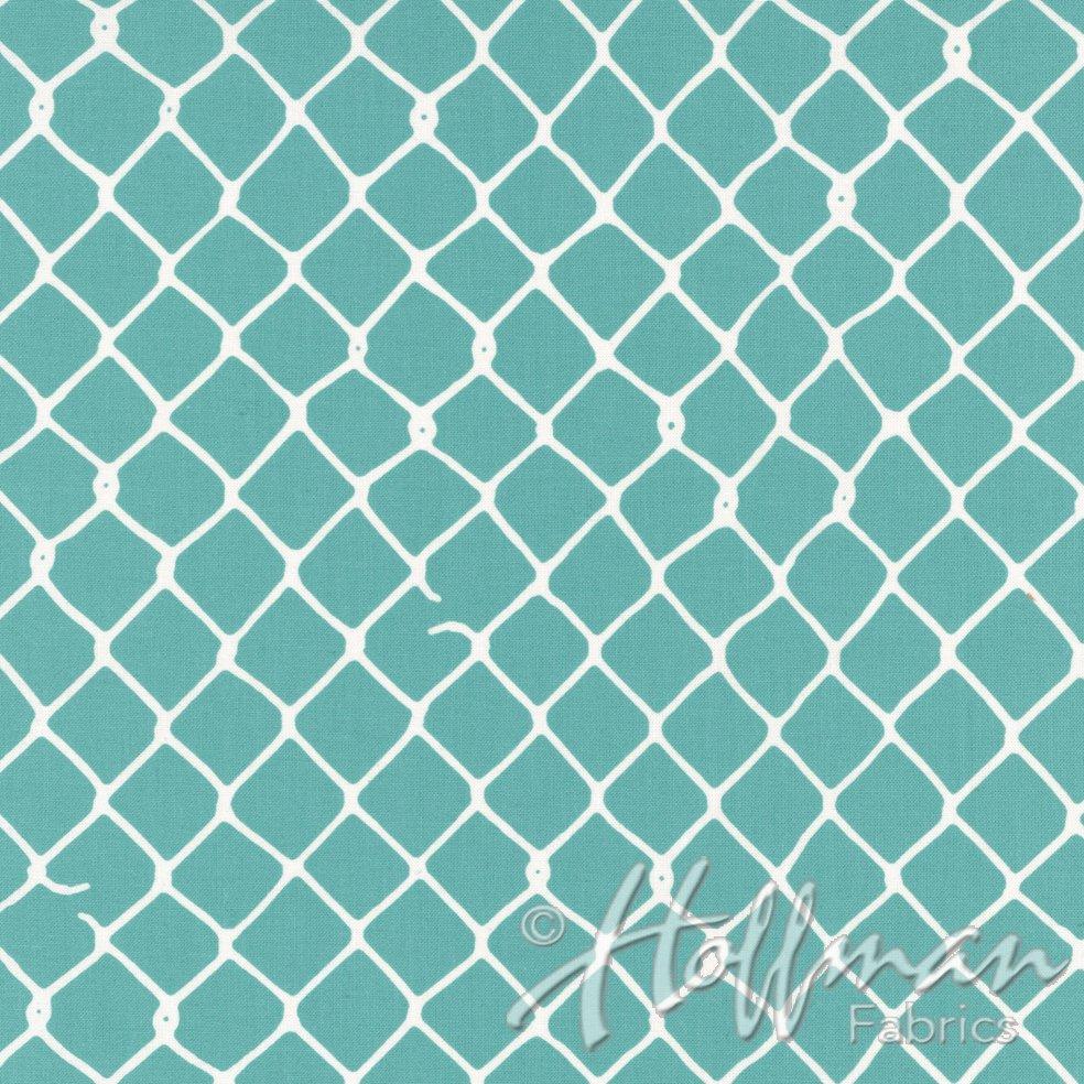 Grafic -Aqua