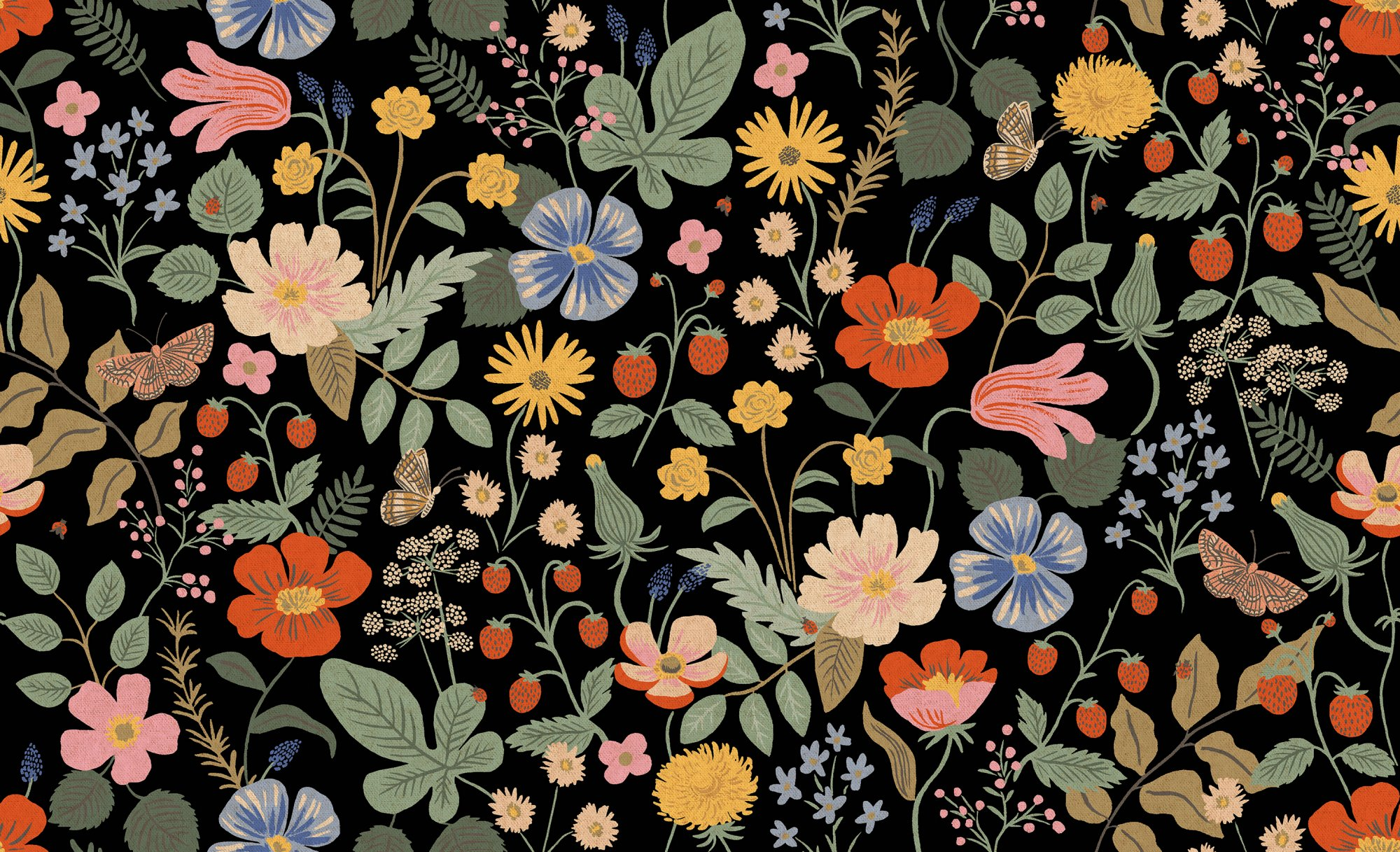 Strawberry Fields - Black Canvas