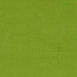 Cotton Couture -Asparagus