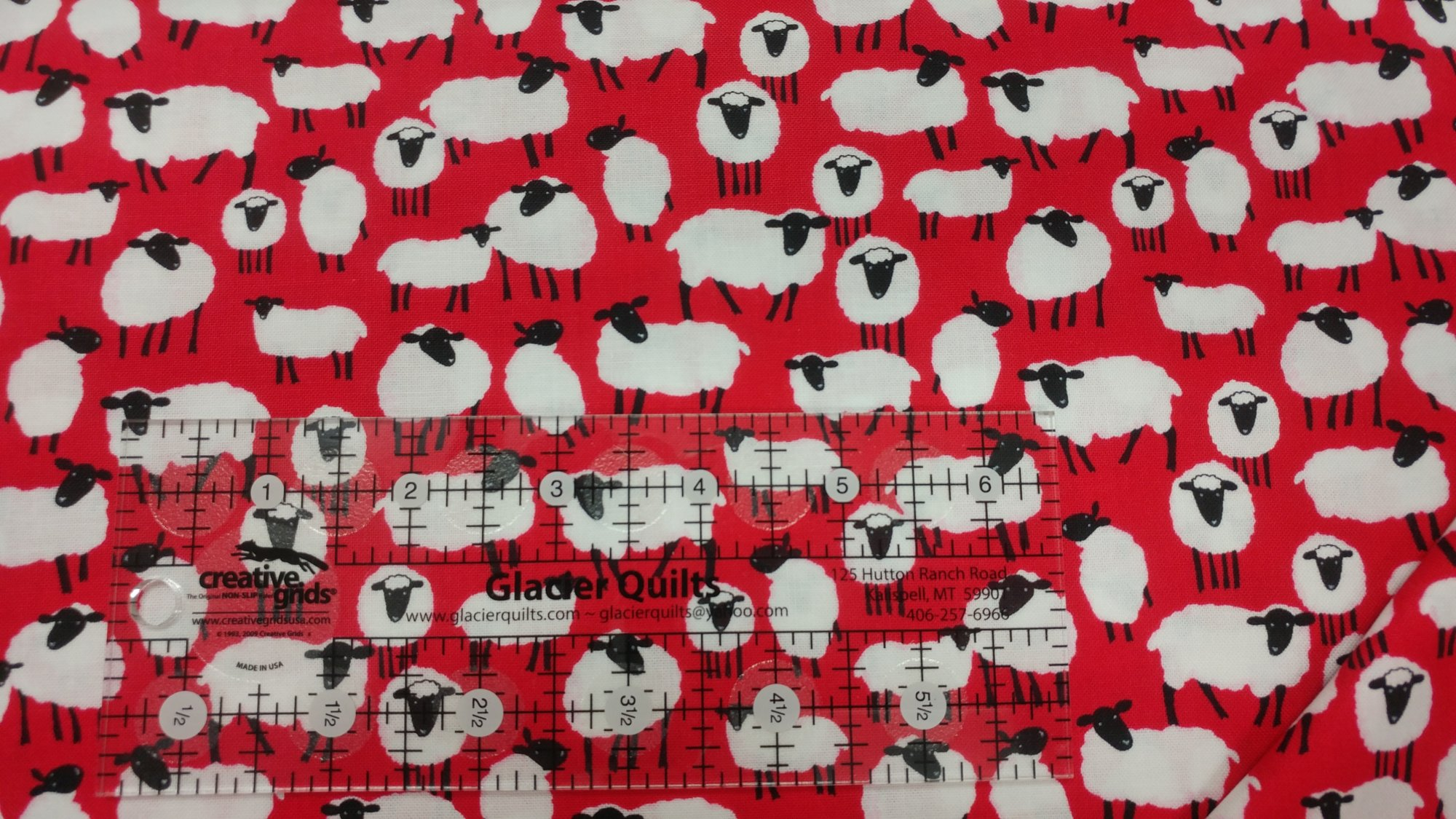 Mini Sheep Gail-C2948