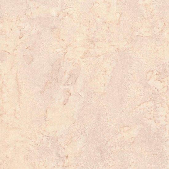 1895 - SANDDOLLAR 501