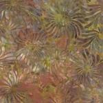 Color Daze Reflections 42240 19