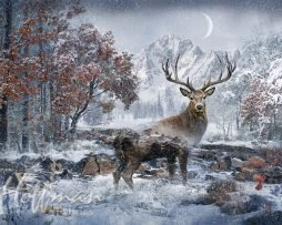 Hoffman Spectrum Digital Panel #242 - Call Of The Wild Stag December Q4460 597