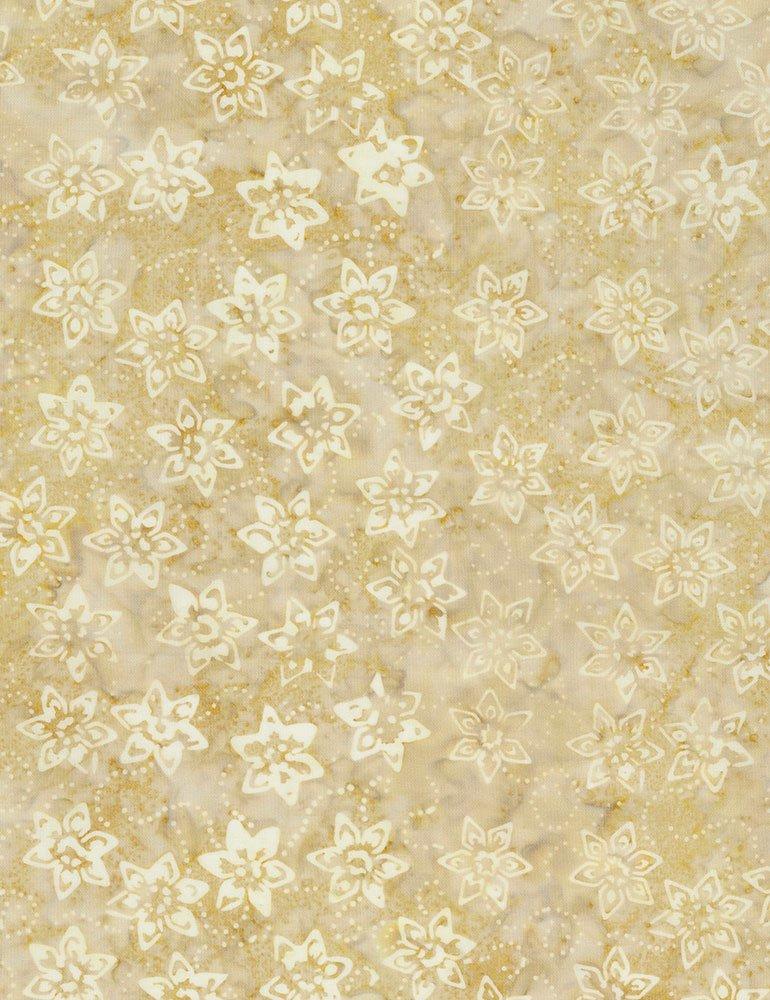 Gunpowder - Daffodil B6170 Tortilla