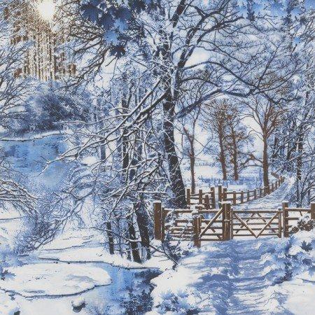 Winter Scenic C4629