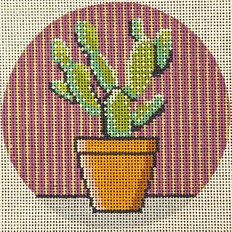 Cactus  Tess & Thorn