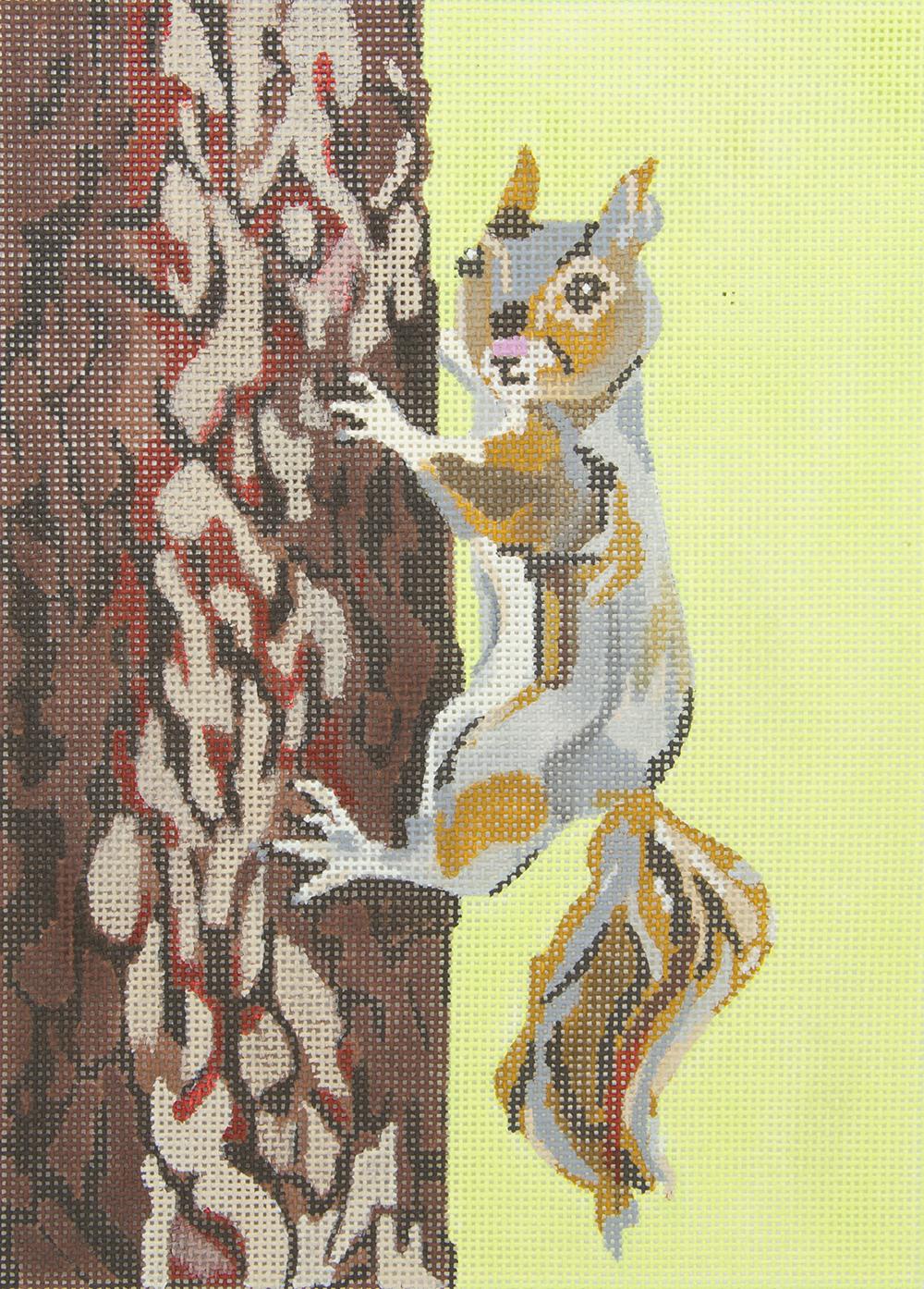 JKNA065 Squirrel on Trunk Judy Keenan