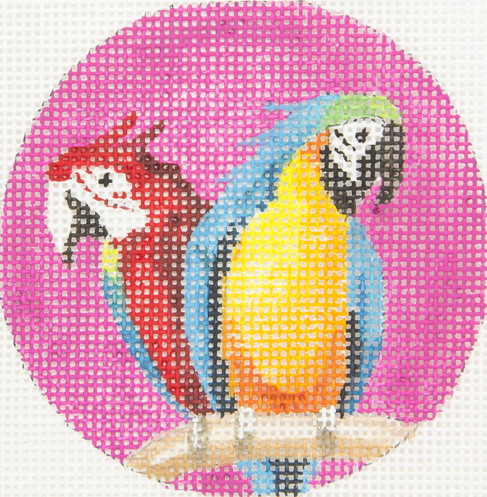 IN329 Two Parrots Talking 3 Round Colors of Praise