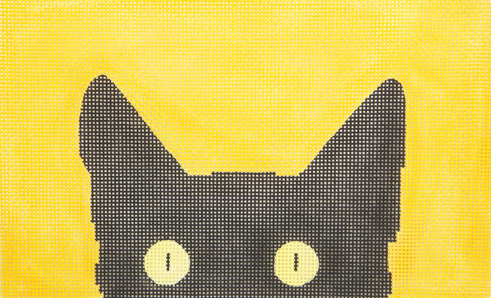 C102C13 Cat Large Peek A Book Eye Candy
