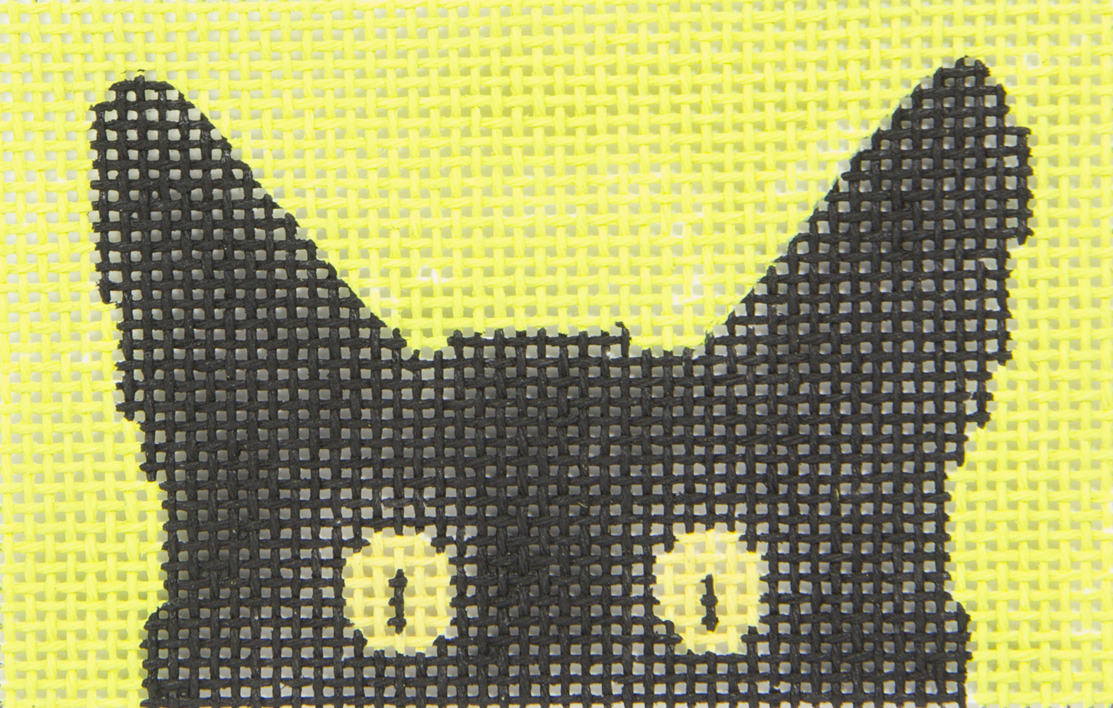 C102LT Cat Small Peek A Book Eye Candy