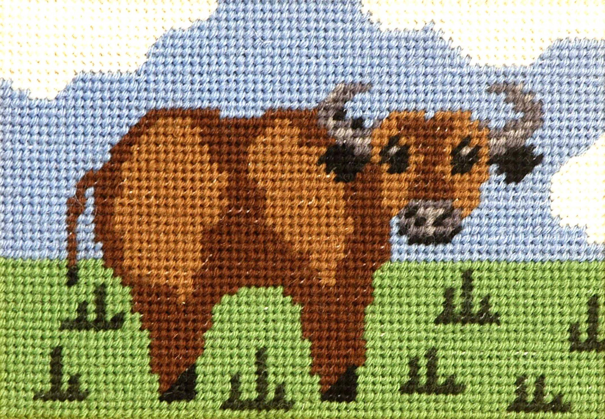 Beginner Needlepoint Kit Buffalo