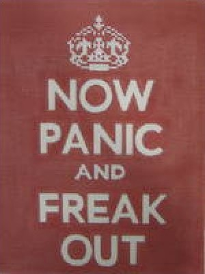 Now Panic & Freak Out Needlepoint